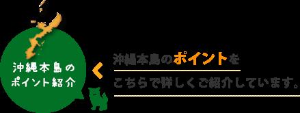 沖縄本島のポイント紹介