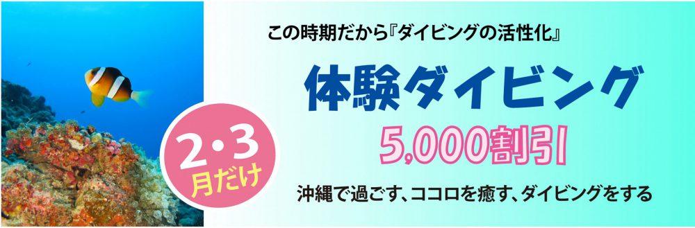 2・3月だけ!体験ダイビング5,000円割引き中